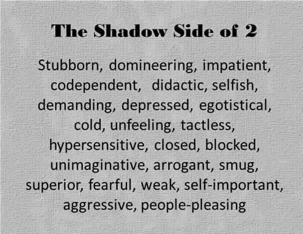 The Shadow Side of the 2