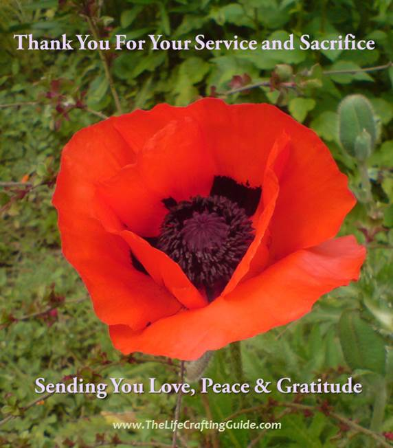 A Red Poppy with the words Thank You for your service and sacrifice